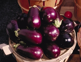 Aubergines from http://www.usda.gov/oc/photo/98c0468.jpg